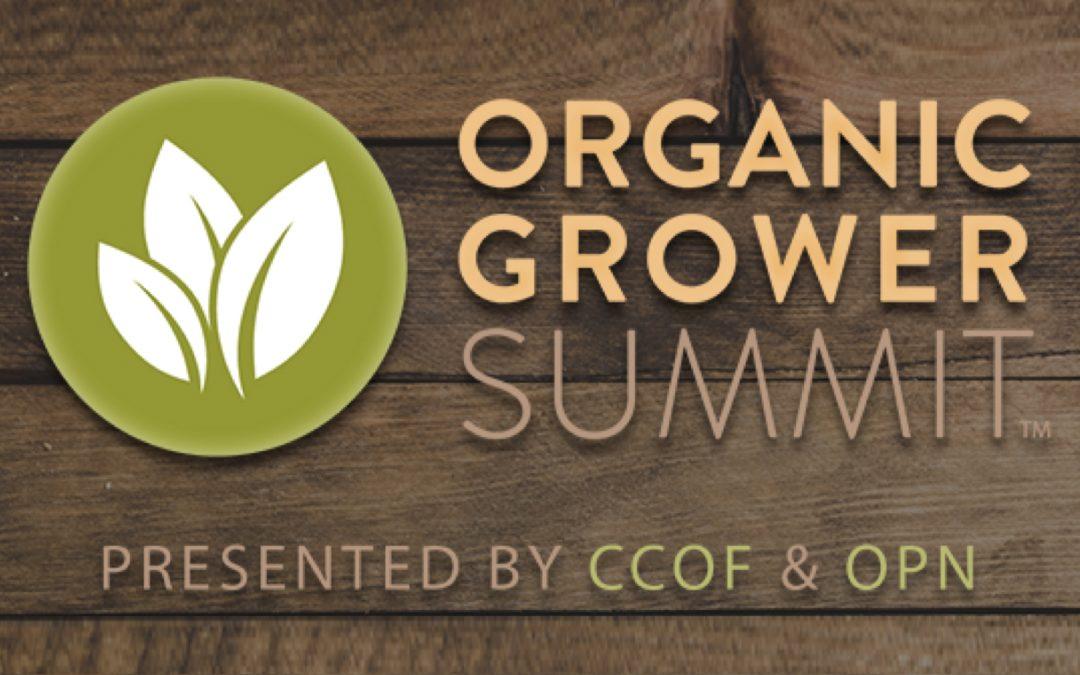 Conectando productores y productores orgánicos con proveedores de servicios y cadena de suministro
